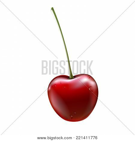 Red cherry. Ripe berries with stalk. Realistic vector illustration with transparent shadows isolated on plaid background. Sweet fruits. 3d vector