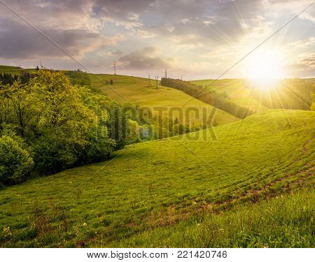 lovely countryside with grassy hills at sunset. beautiful nature of Carpathian mountains in springtime