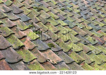 Old colorful ceramic baked roof tiles on a big authentic farm in Netherlands