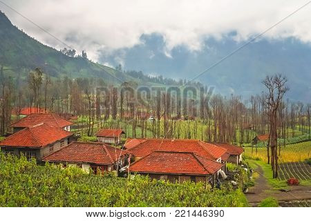 Cemoro Lawang village nearby the spectacular Gunung Bromo and Sumeru volcanoes in Java, Indonesia