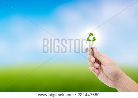 Hand Holding A Light Bulb With Energy And Fresh Green Tree Inside On Nature Background, Environment