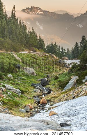 Afternoon Light Glows Over Alpine Meadow and valley