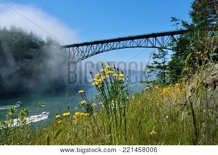 Scenic view of Deception Pass Bridge in summer day with fog and wildflowes on cliff. Seattle. Anacortes. Widbey Island. Puget Sound. Juan De Fuca Strait. Washington. Pacific Northwest. United States.
