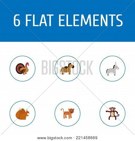 Set of alive icons flat style symbols with horse, leopard, donkey and other icons for your web mobile app logo design.