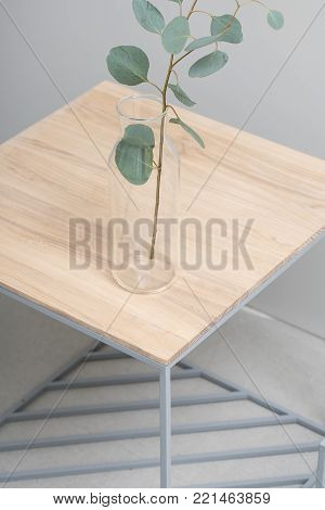 Glass vase with a green branch of eucalyptus stands on the wooden-metallic stands on the gray background in the studio. Closeup. Vertical.