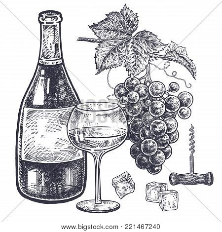 Vintage hand drawing on subject of alcohol. Bottles with white wine, grapes, wine glass with drink, ice slices and corkscrew. Isolated black image on white background. Vector illustration art.