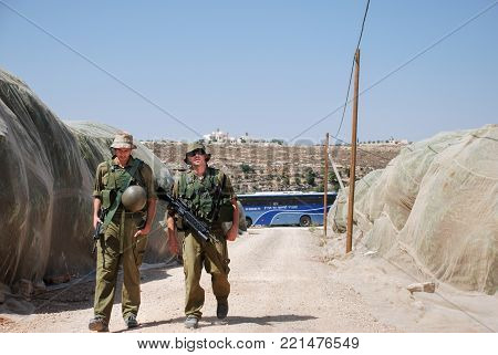 Two Israely Soldiers Patrol At Cherry Plantation In Hebron Area