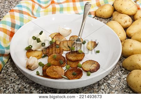 fried potatoe slilces, served with sour cream, roasted garlic and spring onions