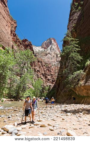 Springdale, USA - June 03, 2015: Group of tourists hiking in the cold river of famous trail The Narrows in Zion National Park, Utah.