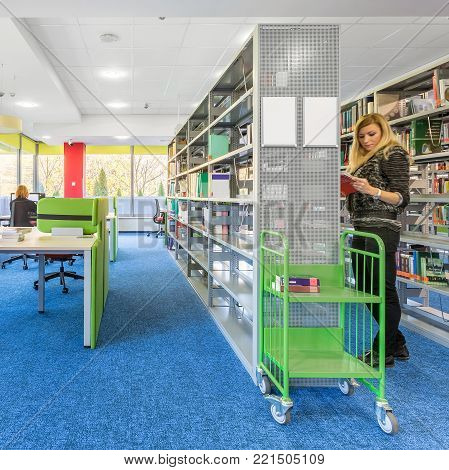 Colorful library interior with modern metal bookcase and blue floor