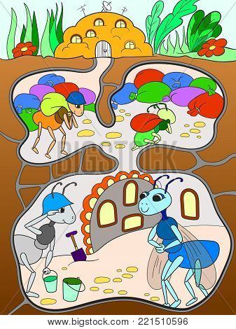 Interior and family life of ants in an anthill color for children cartoon vector illustration.