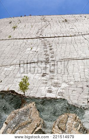 Real dinosaur footprint imprinted in the rock. Nacional Park in Sucre, Bolivia. Stock photo