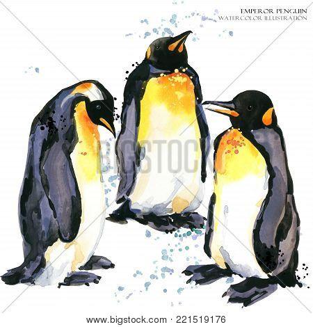Emperor penguin hand draw watercolor illustration. polar bird