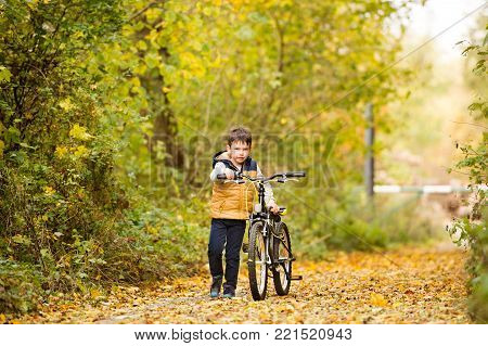 Cute little boy in warm clothes outside in a park on a sunny day, cycling outside in autumn nature.