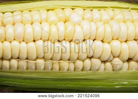 close up white corn kernels in corn pod