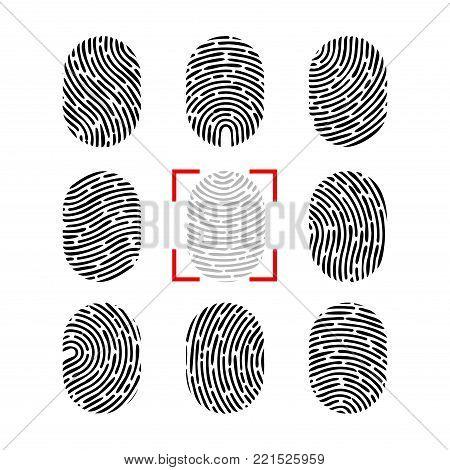 Vector fingerprint set. Finger print of human. Security crime sign icon. Human id.