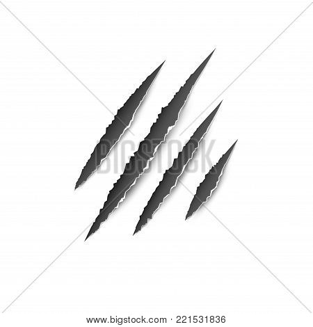 Claws paw scratches isolated vector on white background. Animal Claws horror scratch tiger, lion or bear.
