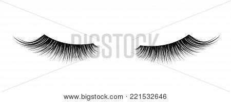 Black False eyelashes. Mascara single decorative element. Vector