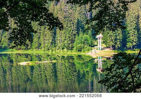 lake in Synevyr national park in summertime. beautiful nature of Carpathians. view from the forested shore