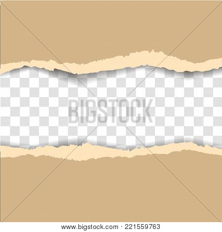 Vector illustration of old ripped paper. Vector ripped paper
