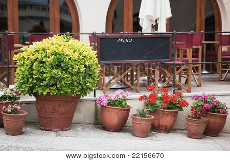 Flowers in pots in front of street cafe