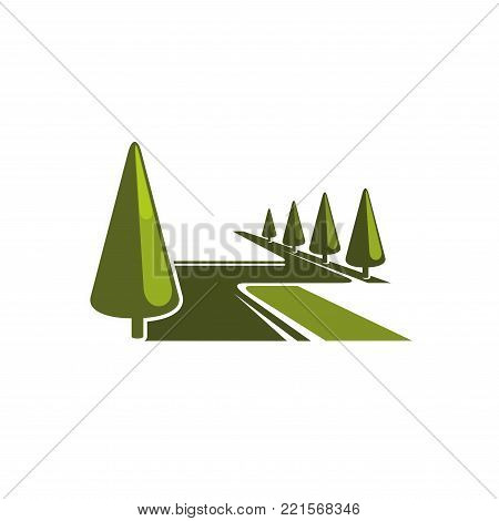Green trees forest or park square icon for landscape design company or eco environment concept design template. Vector park trees or urban ecology garden horticulture and green nature symbol
