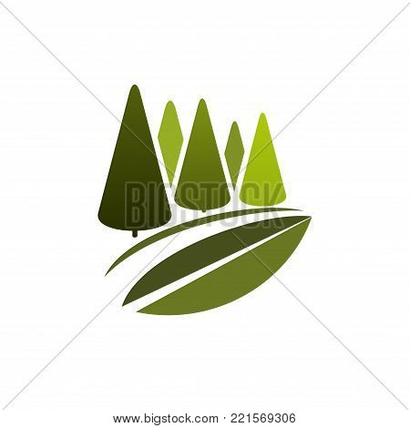 Green trees in nature forest icon template for ecology environment or landscaping design and urban horticulture association. Vector isolated green park or woodlands square for eco gardening concept
