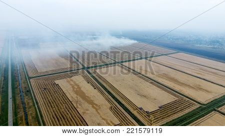 Combine harvesters Don. Agricultural machinery. view of the field from above while harvesting rice with the help of harvesters.