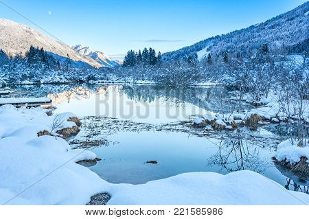 Reflection in the pond of Zelenci pond (river Sava spring)
