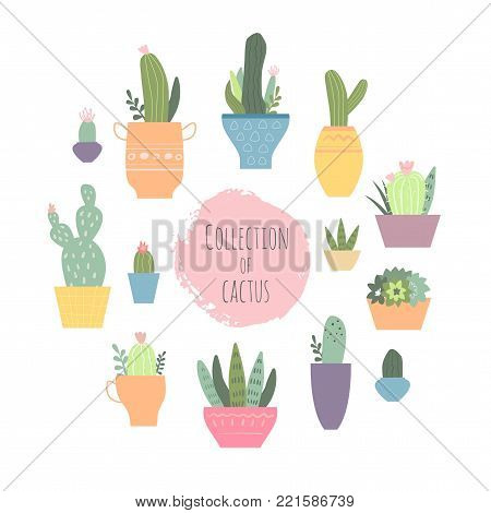 Collection of cactus. Vector set with cute cactuses and succulents in flowerpots. Illustration with home plants in scandinavian style.