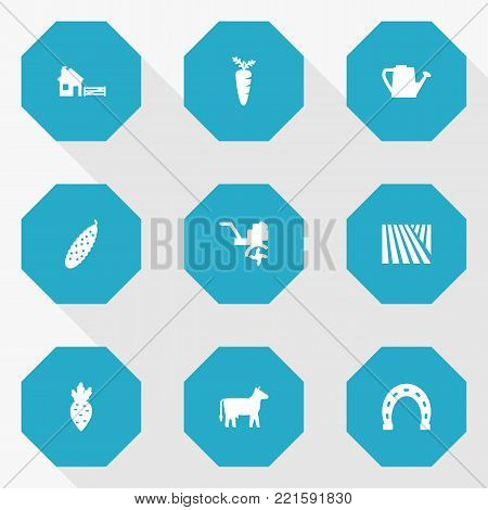 Collection Of Radish, Talisman, Combine-Harvester And Other Elements.  Set Of 9 Harvest Icons Set.