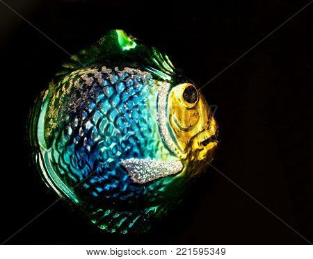 Closeup of a Glass Christmas Tree Ornament of a Colorful Fish