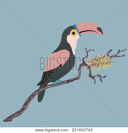 Cute hand drawn toucan bird. Vector Illustration