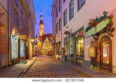 Decorated and illuminated Christmas tree and Christmas Market at Town Hall Square or Raekoja plats at night, Tallinn, Estonia.