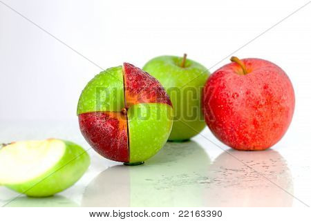 Tasty Apples Are Meeting
