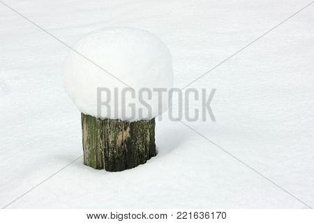 Stub in snowdrift. Old pine stump with a snow cap in the winter forest.