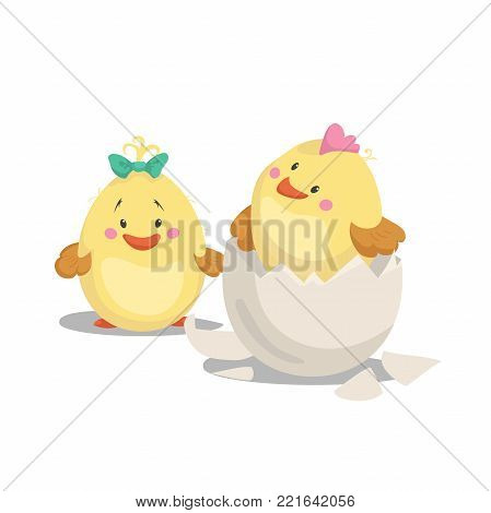 Chicken new born boy with crest in hatched egg and girl chick with green bow. Cartoon flat trendy design spring and new born baby vector illustration.