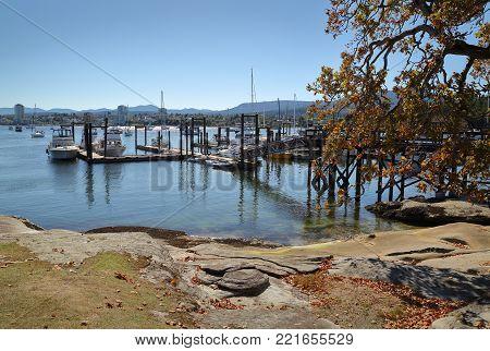 Whatcom Falls Bridge. Whatcom falls bridge in the Pacific Northwest city of Bellingham, Washington.