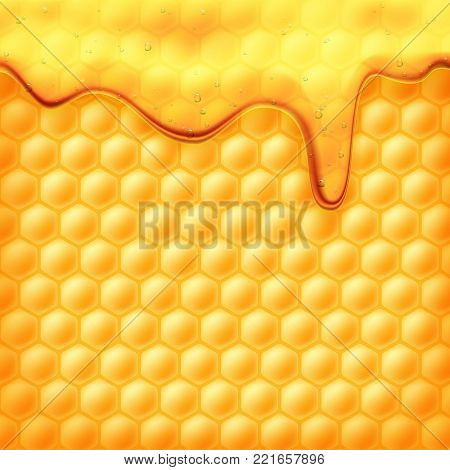 Honey flows on the bee honeycomb. Drops of yellow syrup flow. A natural product and a sweet drink. Stock vector illustration.