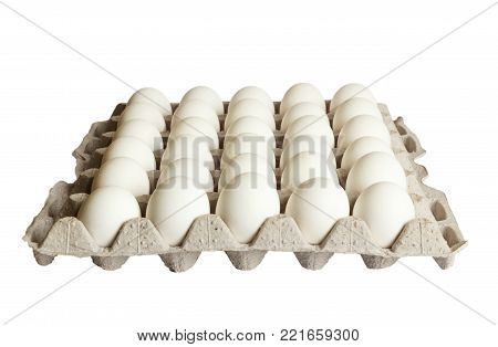 white Eggs pack isolated on white background.
