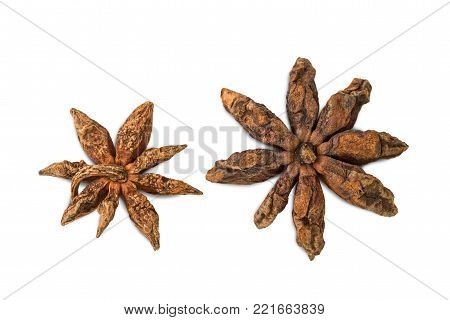 Closeup Of Reverse Sides Of Two Star Anises (star Aniseed Or Chinese Star Anise), Isolated On White