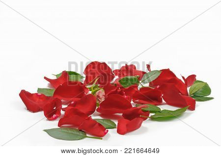 Heap of red rose petals and leaves laying on flat surface