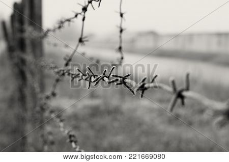 Barbed wire is a symbol of unfreedom, deprivation and concentration camps