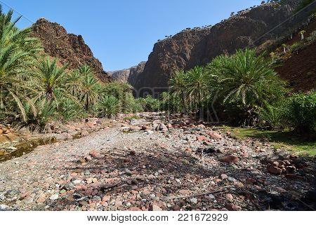 Yemen. Most beautiful canyon on Socotra island, Wadi Dirhur (Daerhu). Dry riverbed between roks