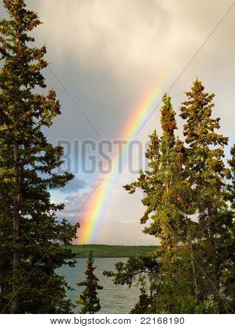 Rainbow over lake in boreal forest in YT, Canada