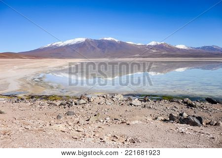 Clear altiplano laguna in sud Lipez reserva Eduardo Avaroa, Bolivia