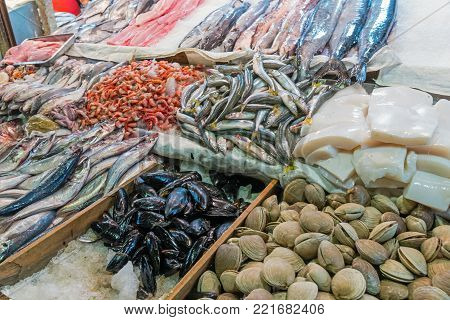 Fish and seafood at the Mercado Central in Santiago, Chile