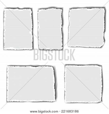 Set of pieces of paper with torn edges. Space for  text.