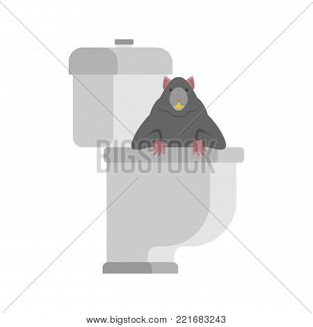 Rat in toilet. rodent is in WC. Anti-Santry. Dirty toilet. Vector illustration