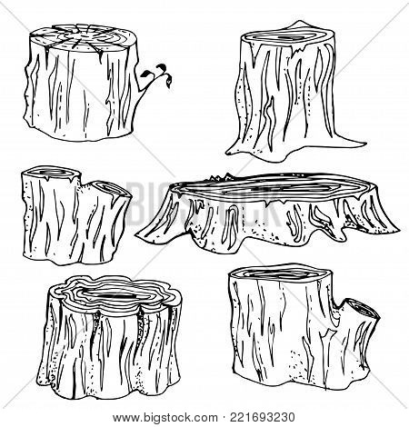 Stump Handdrawn Set